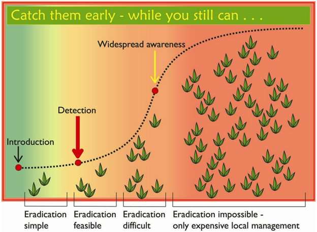 Invasive Species Control | Eradication Chart