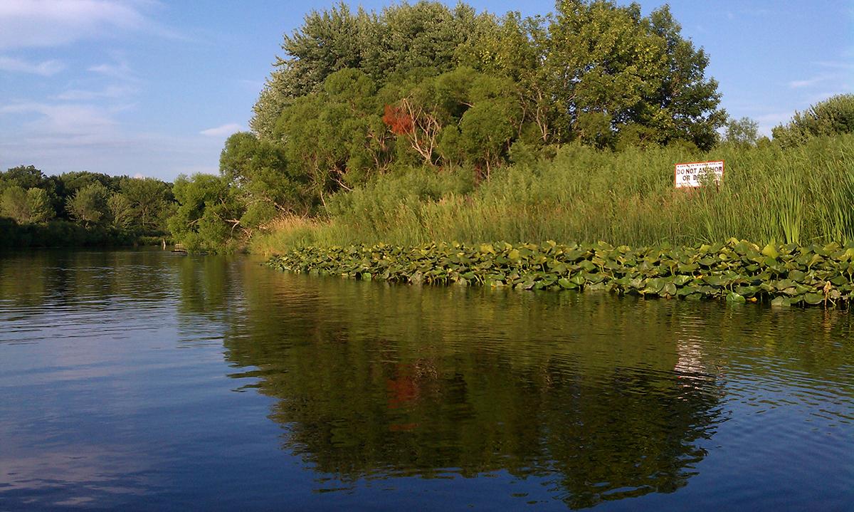 Muskegon Lake Watershed Partnership | River