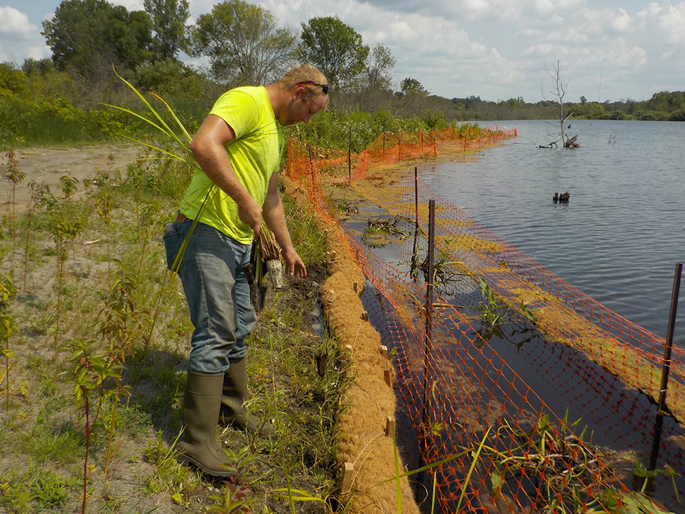 Shoreline BMP | Nature-based Stabilization