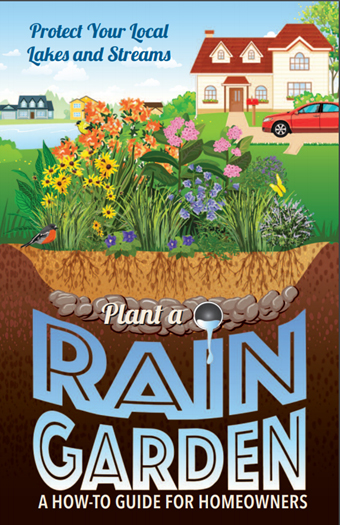 Shoreline Best Management Practices | Plant A Rain Garden