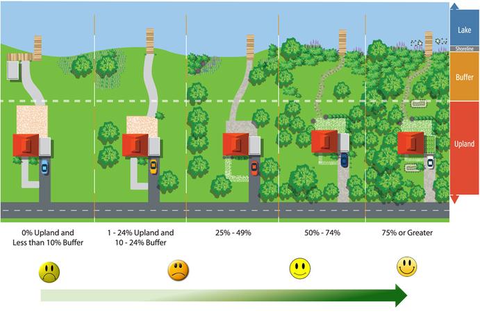 Shoreline Best Management Practices | Reduce Lawn Size
